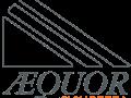 Logo Aequor sicurezza trasparente